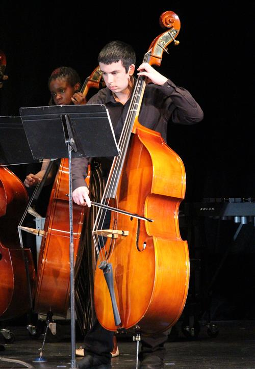 Bassists perform in this picture.