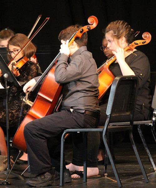 Cellists perform in this picture.